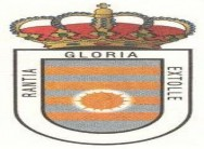 Seguro de responsabilidad civil general del Ayuntamiento de Villalpando